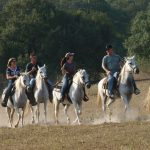 Old Fashioned Christmas - Enjoy Texas Style Holidays On A Ranch